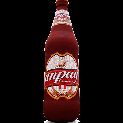 anpay premium